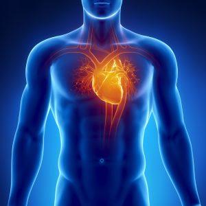 Maladie Coronarienne - Sport Santé - Activités Physiques Thérapeutiques à Luxembourg