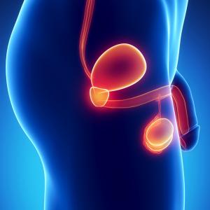 Cancer de la Prostate - Sport Santé - Activités Physiques Thérapeutiques à Luxembourg