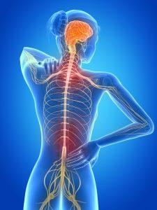 Sclérose en Plaques - Sport Santé - Activités Physiques Thérapeutiques à Luxembourg