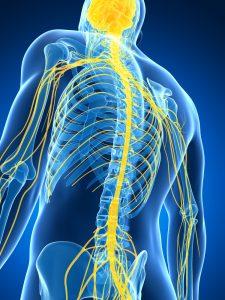 Maladies Neuromusculaires - Sport Santé - Activités Physiques Thérapeutiques à Luxembourg